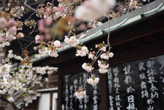 Japan, Japonsko