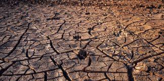 Príliš slaná pôda začala trápiť veľké množstvo krajín.